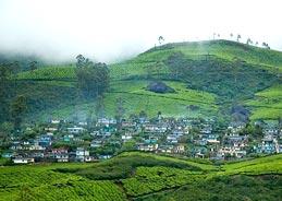 http://kerala-cities.kerala-tourism.org/gifs/devikulam-munnar-kerala.jpg